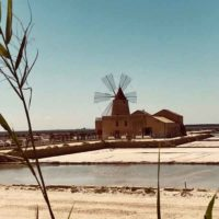 visit salinas in west sicily, trapani marsala what to do, guide tourism excursion sicily