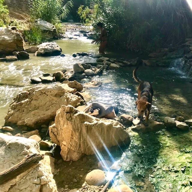 segesta termes temple and hot springs, visiter la sicile de l'ouest, guide tourisme excursion
