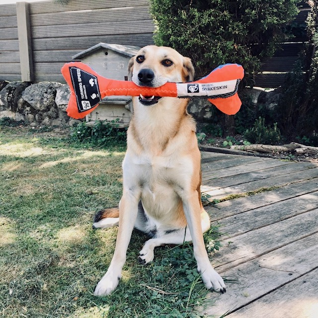 tissu kitesurf reutiliser; coudre reparer kitesurf; creation avec tissu kite; recycler aile kite; vieille aile kitesurf